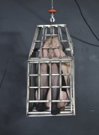 Amateur blonde sub is caged and then suspensded